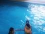 Plavání na hotelu Vega